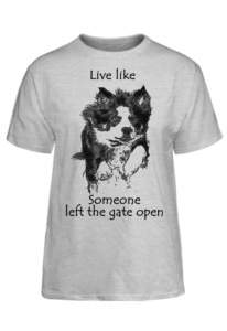 live-border_collie